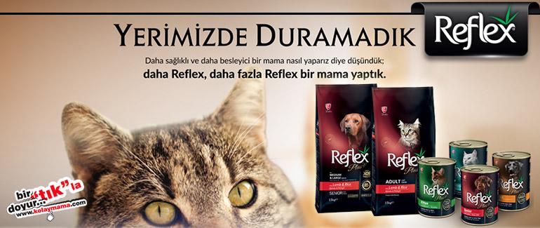 [Resim: reflex-banner.jpg]