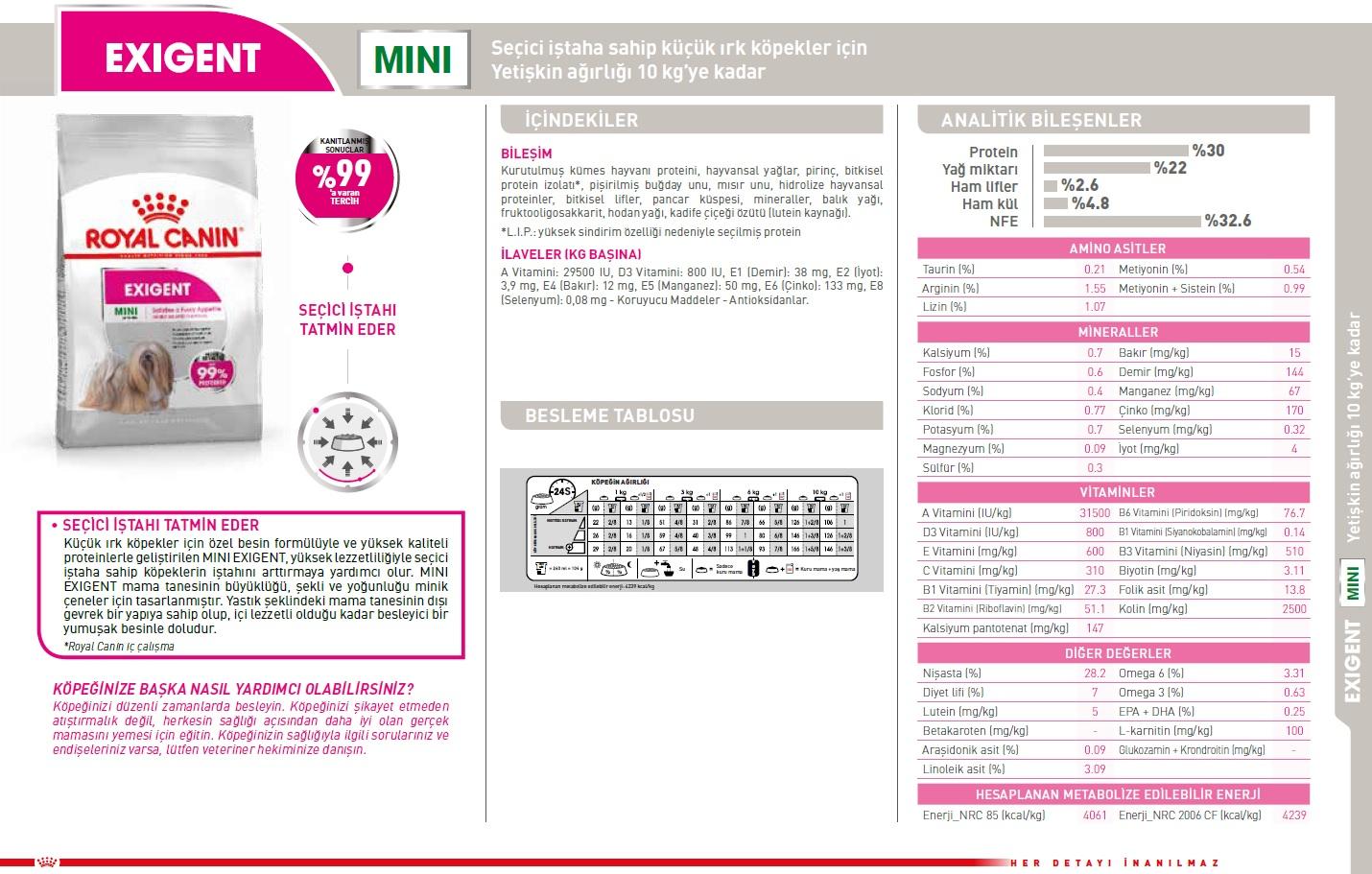 miniexigent.jpg (384 KB)