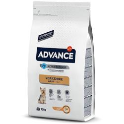 Advance - Advance Yorkshire Terrier Irk Köpek Maması 1,5 Kg+5 Adet Temizlik Mendili
