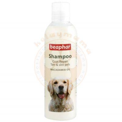 Beaphar Avustralya Fındığı Yağlı Kıtık Çözücü Tüy Parlatıcı Köpek Şampuanı 250 ML