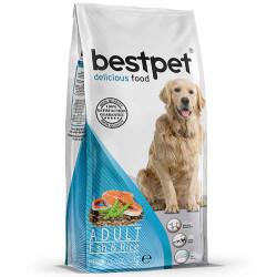 Bestpet - Bestpet Fish Balık Etli Yetişkin Köpek Maması 15 Kg