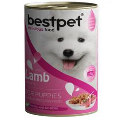 Bestpet - Bestpet Puppy Kuzu Etli Parça Etli ve Jöleli Yavru Köpek Konservesi 400 Gr