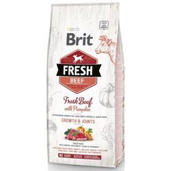 Brit Care - Brit Care Fresh Puppy Sığır Etli ve Kabaklı Yavru Köpek Maması 2,5 Kg + 5 Adet Temizlik Mendili