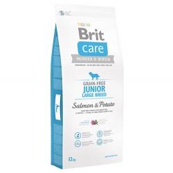 Brit Care - Brit Care Junior Large Somon Büyük Irk Tahılsız Yavru Köpek Maması 12 Kg + 10 Adet Temizlik Mendili