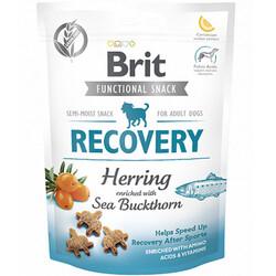 Brit Care - Brit Care Recovery Ringa Balıklı Aktif Tahılsız Köpek Ödülü 150 Gr
