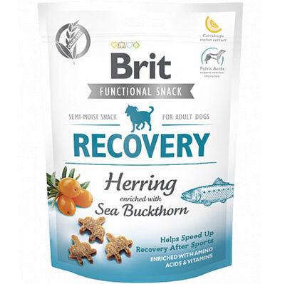 Brit Care Recovery Ringa Balıklı Aktif Tahılsız Köpek Ödülü 150 Gr