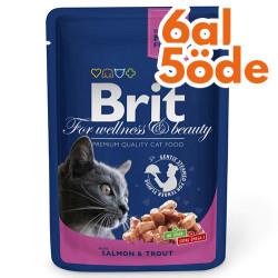 Brit Care - Brit Premium Salmon & Trout Somon ve Alabalıklı Kedi Yaş Maması 100 Gr - 6 Al 5 Öde