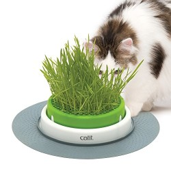 Catit - Catit 43161 Senses 2.0 Grass Planter Kedi Çimi Oyun Merkezi