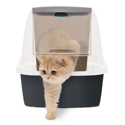 Catit Magic Blue Filtresiz Jumbo Kedi Tuvaleti 57 x 46,5 x 50 Cm ( Gri - Beyaz ) - Thumbnail
