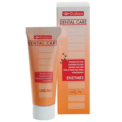 Diafarm Dental Care Paste Ağız ve Diş Sağlığı Tamamlayıcı Köpek Macunu 75 Gr
