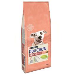 Dog Chow - Dog Chow Somonlu Hassas Yetişkin Köpek Maması 14 Kg+10 Adet Temizlik Mendili