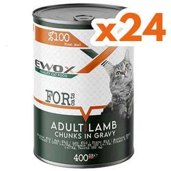 Ewox - Ewox Kuzu Etli Parça Etli ve Soslu Yetişkin Kedi Konservesi 400 Gr x 24 Adet