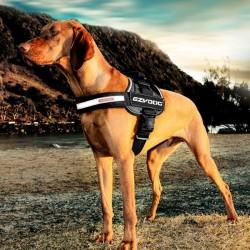 Ezydog Convert Harness Modern Köpek Göğüs Tasması Mavi Medium - Thumbnail