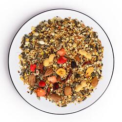 Gold Wings The Best Meyve Nutslı Papağan Yemi 1,25 Kg - Thumbnail