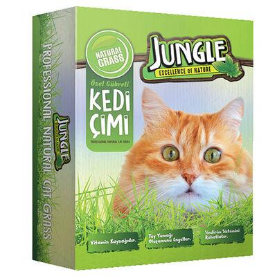 Jungle Kedi Çimi Kutulu ( Fileli ) - 14 x 14 Cm