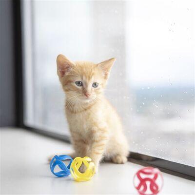 JW 32346 Cat Crazies Kedi Oyuncağı ( 3'lü Paket )