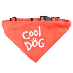 Karlie - Karlie 516577 Turuncu Kumaş Bandanalı Köpek Boyun Tasması 25-40 Cm