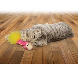 Kong Kedi Tüylü ve Kediotlu Oyuncak Yastık 16 cm - Thumbnail