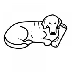 Pet Comfort Alpha Mirandus 33 Köpek Yatağı L 70x90 cm - Thumbnail