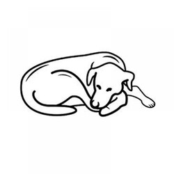 Pet Comfort Alpha Mirandus 43 Köpek Yatağı L 70x90 cm - Thumbnail