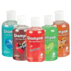 Pet Love - Pet Love Forest Fruit Meyve Aromalı Kedi ve Köpek Şampuanı 250 ML