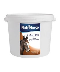 Pharmax - Pharmax Nutri Horse Gastro 2.5 Kg