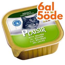 Plaisir - Plaisir Somon Balıklı Pate Yetişkin Kedi Yaş Maması 100 Gr-6 Al 5 Öde