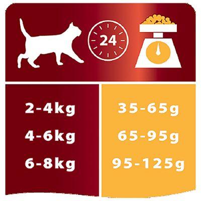 Pro Plan Original Chicken Tavuklu Kedi Maması 10 Kg x 2 Adet