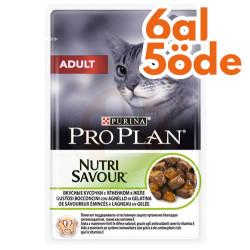 Pro Plan - Pro Plan Pouch Lamb Kuzulu Yaş Kedi Maması 85 Gr - 6 Al 5 Öde