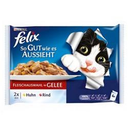Felix - Felix Tavuk ve Sığır Etli Yaş Kedi Maması 4 Adetx100 Gr (Avantajlı Paket)
