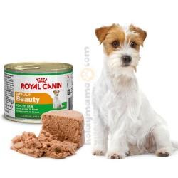 Royal Canin Adult Beauty Tüy Sağlığı Köpek Konservesi 195 Gr - Thumbnail