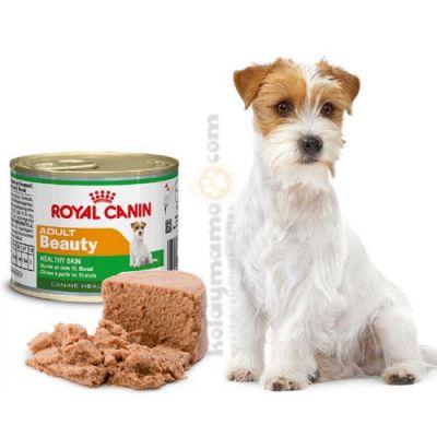 Royal Canin Adult Beauty Tüy Sağlığı Köpek Konservesi 195 Gr