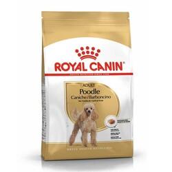Royal Canin - Royal Canin Poodle Adult Yetişkin Köpek Irk Maması 3 Kg + Saklama Kabı