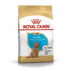 Royal Canin - Royal Canin Poodle Puppy Yavru Köpek Irk Maması 3 Kg + Saklama Kabı