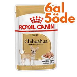 Royal Canin - Royal Canin Pouch Chihuahua Irkı Özel Yaş Köpek Maması 85 Gr - 6 Al 5 Öde