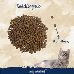 Sanabelle Forelle Alabalıklı Tahılsız Kedi Maması 400 Gr - Thumbnail