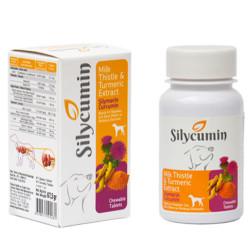 Silycumin - Silycumin Köpekler İçin Bağışıklık Sistemi Destekleyici Tablet 135 Gr (90 Tab)