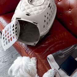 Stefanplast Travel Chic Küçük Irk Köpek ve Kedi Taşıma Kafesi (Bej) - Thumbnail