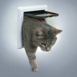 Trixie - Trixie Çift Yönlü Kitlenebilir Kedi Kapısı Beyaz