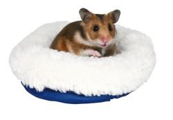 Trixie Hamster Yatağı 16 x 13 Cm - Thumbnail