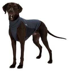 Trixie - Trixie Haşere Kovucu Köpek Kıyafeti L