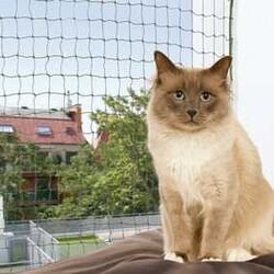 Trixie - Trixie Kedi Cam Koruma Ağı 4 x 3 Mt Yeşil