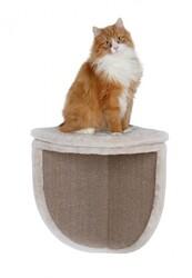 Trixie - Trixie Kedi Köşe Yatağı ve Tırmalaması 35x50x35cm
