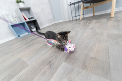Trixie - Trixie Kedi Oltası ve Oyuncağı, Peluş Unicorn, Kediotlu, 45 cm