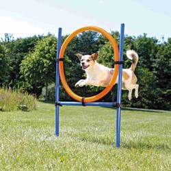 Trixie - Trixie Köpek Agility Eğitim Çemberi 115×3 Cm x 65 Cm