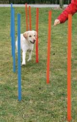 Trixie - Trixie Köpek Agility Eğitim Direkleri