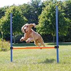 Trixie - Trixie Köpek Agility Eğitim Manisi , 129×115×Ø3 cm
