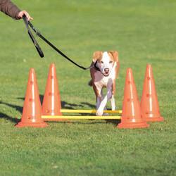 Trixie - Trixie Köpek Agility Oyuncağı 2 Adet 30 x 50 cm 100 cm