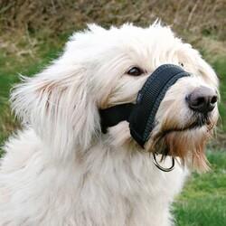 Trixie - Trixie Köpek Ağızlık Large (Doberman)