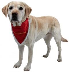 Trixie - Trixie Köpek Bandanalı Boyun Tasma M 37-47cm